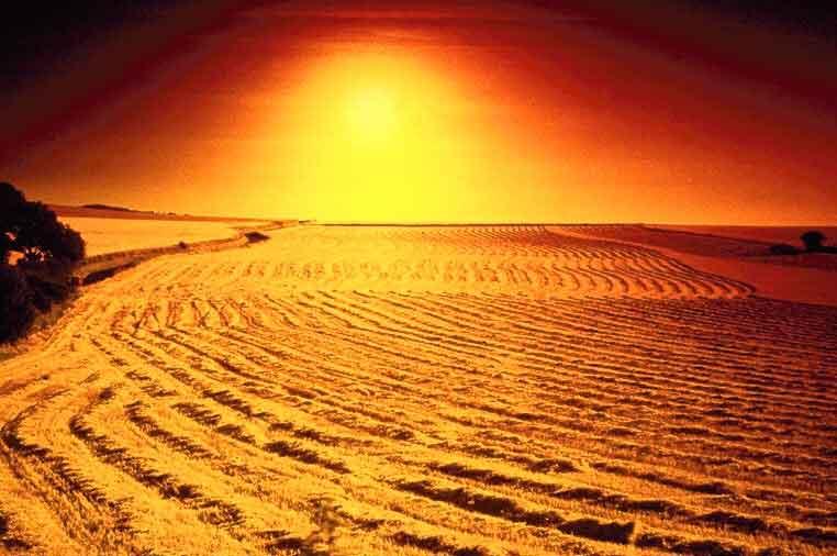desert1_opt